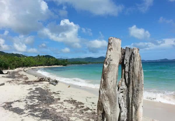 Martynika - karaibska-odsłona Unii Europejskiej