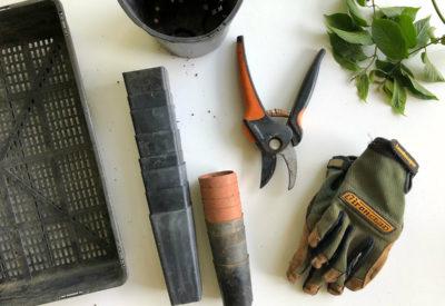Wiosenne porządki w ogródku? Ten sprzęt ci się przyda