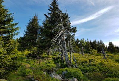 Karkonosze – gdzie pojechać, co zwiedzić, trasy